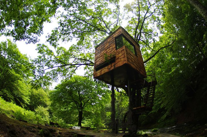 treehouses-by-takashi-kobayashi--japan00mark.jpg