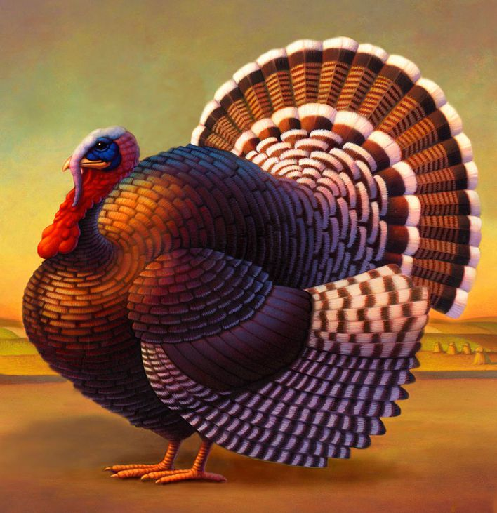 robin-moline-turkey-illustration.jpg