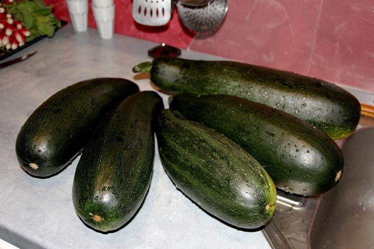 courgettes-011.JPG