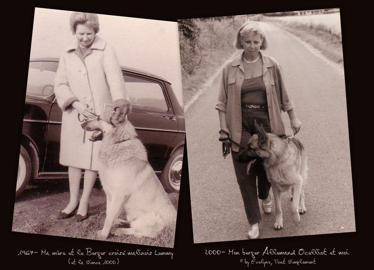 Maman-et-Moi-Montage-avec-les-chiens.jpg