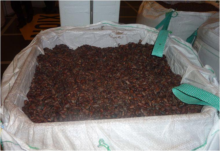 web-gruyere-chocolats-17