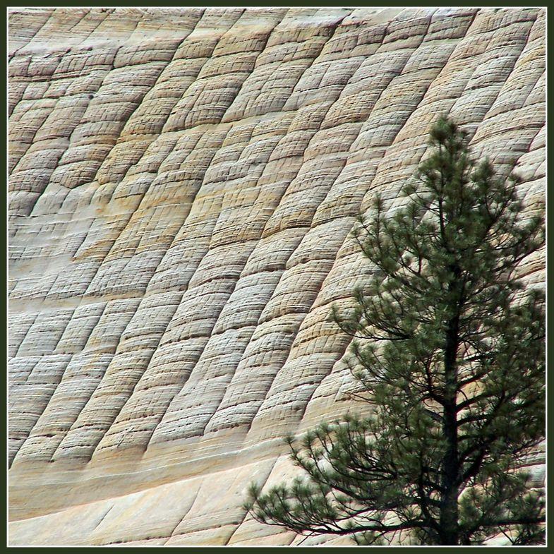 Tissage Géologique (Californie)