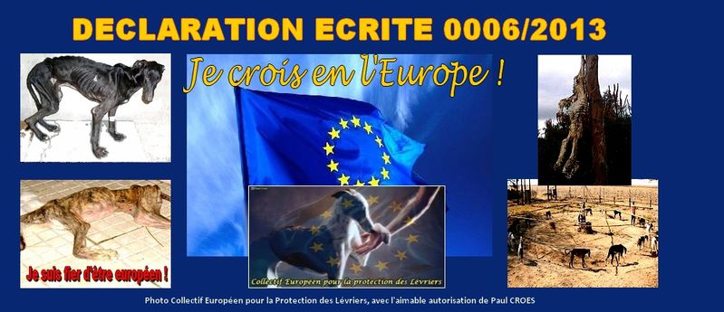 A-declaration-ecrite-0006-2013-collectif-europeen-protectio.jpg
