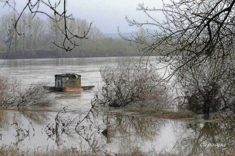 Loire 2304