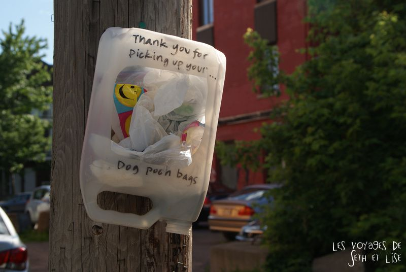 blog voyage canada montreal pvt photo insolite flyer affiche drole message streetart art pooh dog bag sac merde crotte chien