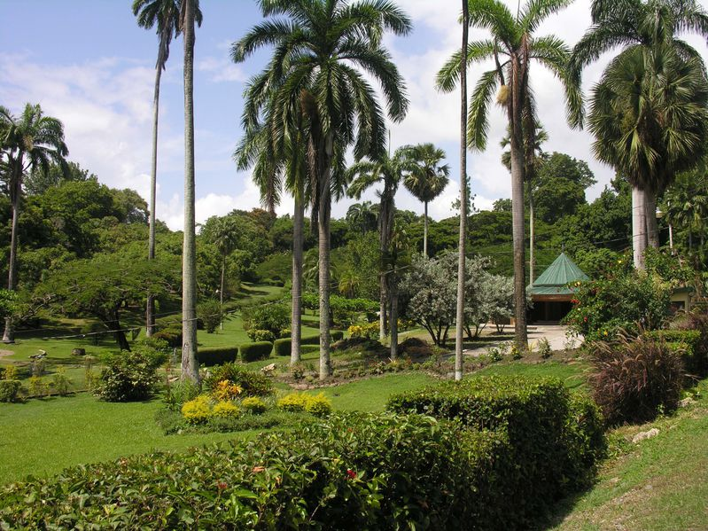Tobago Scarborough Jardin Bot
