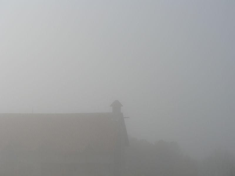 Niebla-dic09 3044