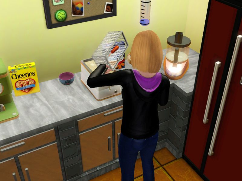 sims 3 djoumdjoum family photofarfouille screenshot