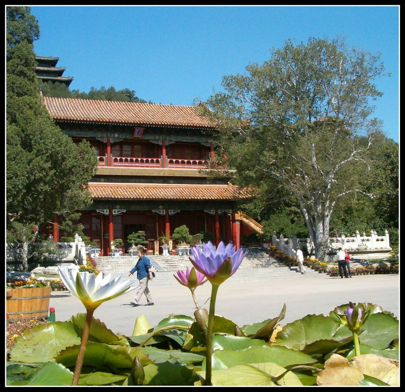 vers le temple (chine)