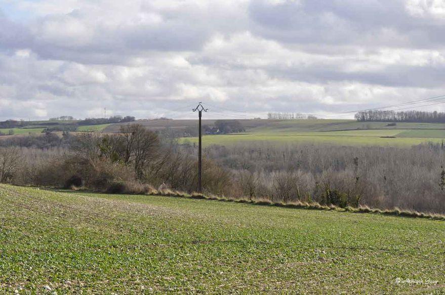 vallee-1622.jpg
