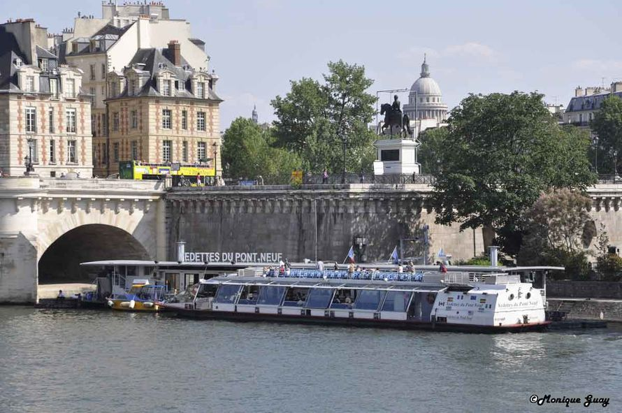 DSC2797-mgalweb vedettes du Pont Neuf