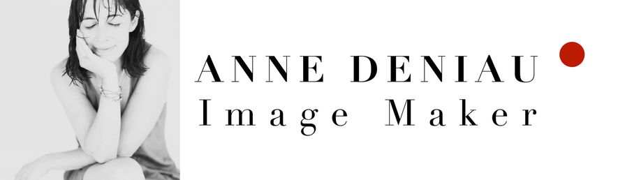 LOGO anne2013 bisRED