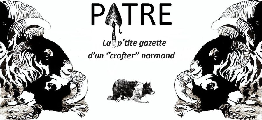 new logo patre blog version crofter