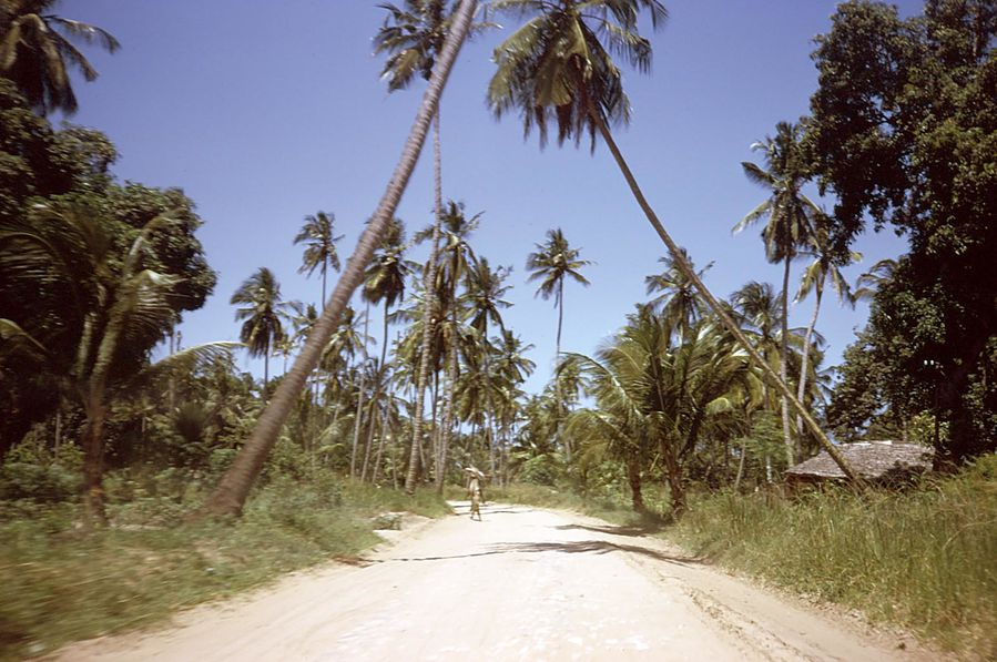 Tanzanie 0006
