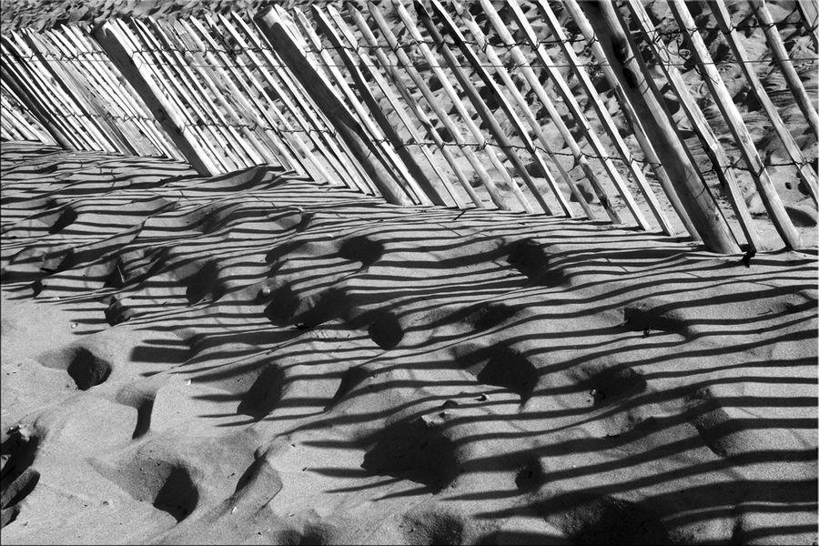 dunes-et-plages (39)