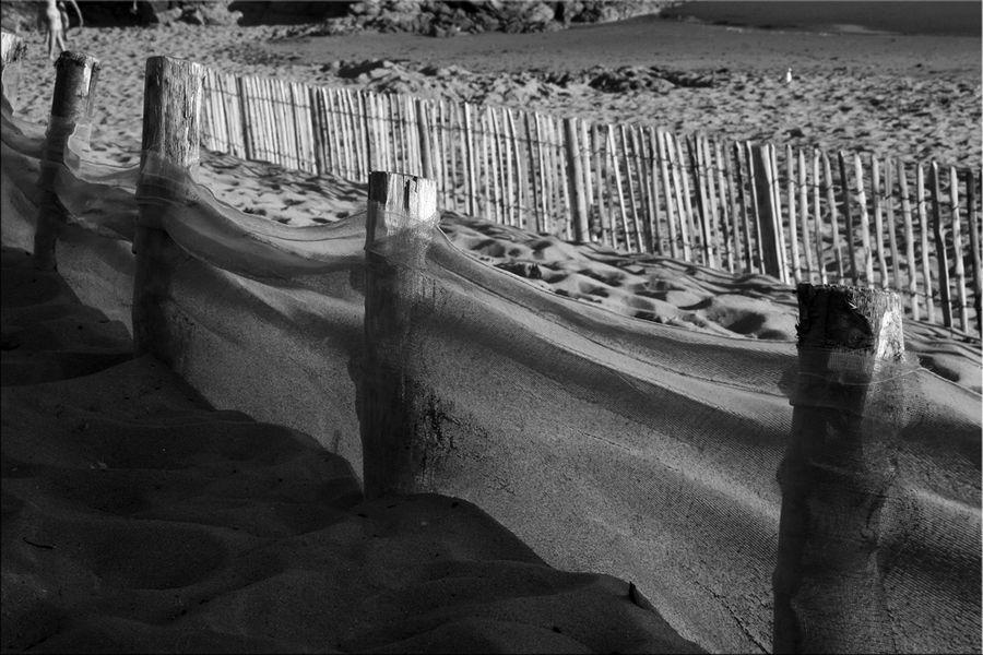 dunes-et-plages (5)
