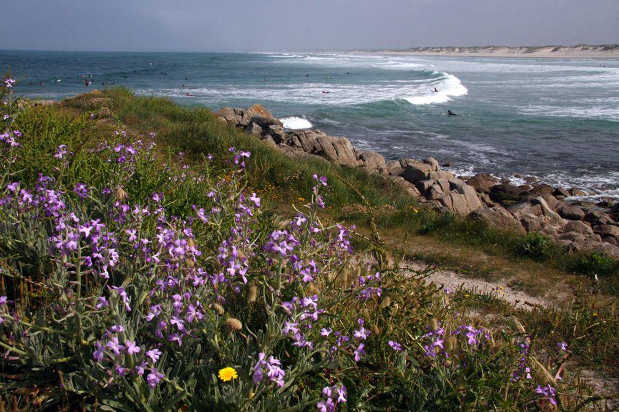 surf-sur-la-plage-de-la-torche (15)