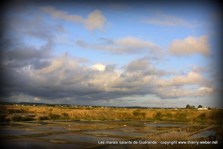 les-marais-salants-de-guerande (30)