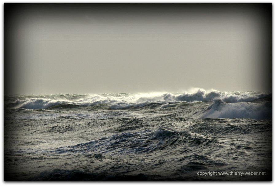 ocean (25)