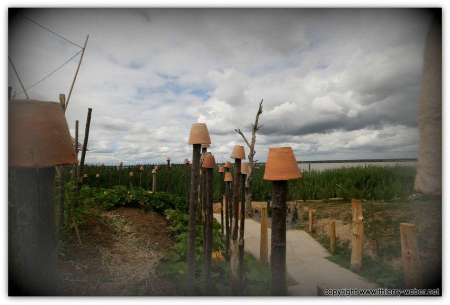 Le jardin etoil de kynia maruyama paimboeuf estuaire for Jardin etoile paimboeuf