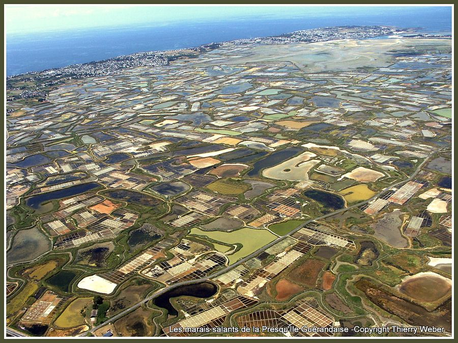 marais-salants-guerande-avion-04