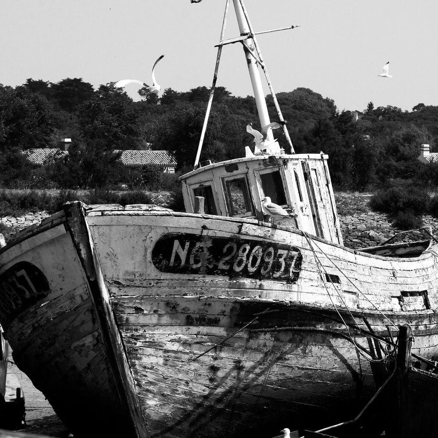 bateaux-oublies (32)