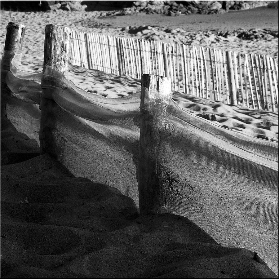 dunes-et-plages (4)-copie-1