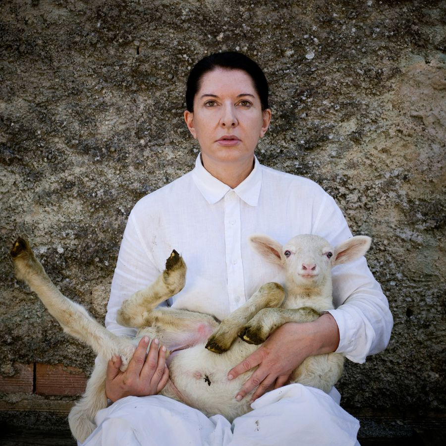 Marina-Abramovic-From-poin-to-point-Portrait-agneau