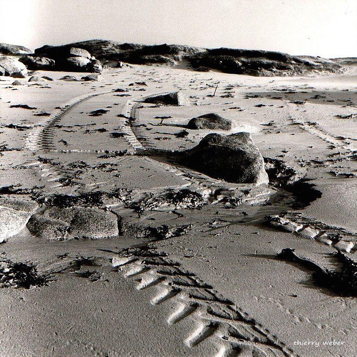 bretagne-profonde (6)