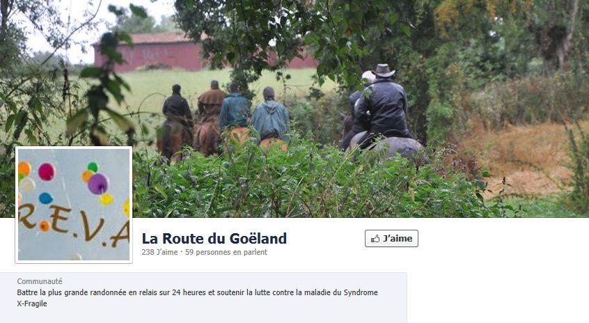 goeland facebook