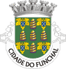 Blason-Funchal-Ile--Madere-parousie.over-blog.fr.png