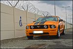 AB87 0491 ford mustang gt v8 2005