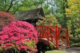 jardin-japonais-pont