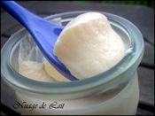 yaourt melon 008-1