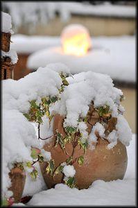 Terrasse-sous-la-neige-2a.jpg