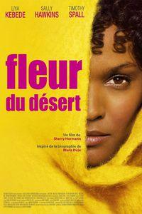 Fleur-du-desert-01.jpg