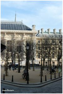 Paris Place Dauphine 5