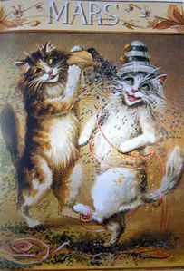 calendrier-chats2-003.JPG
