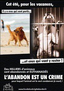 _l__abandon_est_un_crime_m.jpg