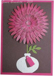 carte fleur daisy 1