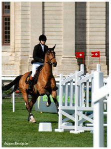 Guillaume Canet Jumping Chantilly 20 avril 2013 d