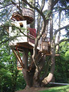 cabane-dans-les-arbres-chateau-de-langeais.JPG