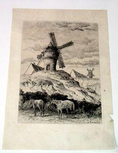 17753.jpg