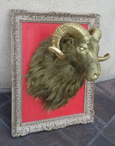 pascal buffard chrysomallos 3