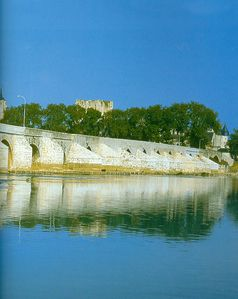 pont Beaugency - 450001