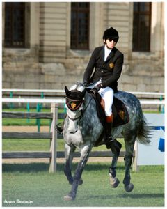 Guillaume Canet Jumping Chantilly 20 avril 2013 h