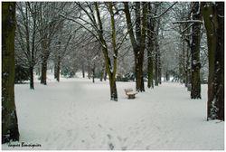 Creil Le Parc Jour de neige 3