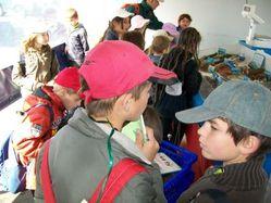 école sainte anne feugarolles capbreton 2009 1