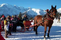 cheval- Megève.photo F. DUVILLARD (5)