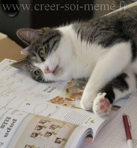 chat stampin up